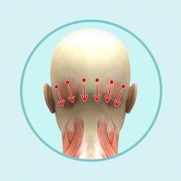 6 mẹo mát-xa đầu đơn giản giúp giảm nếp nhăn, da dẻ hồng hào căng mịn - Hình 4