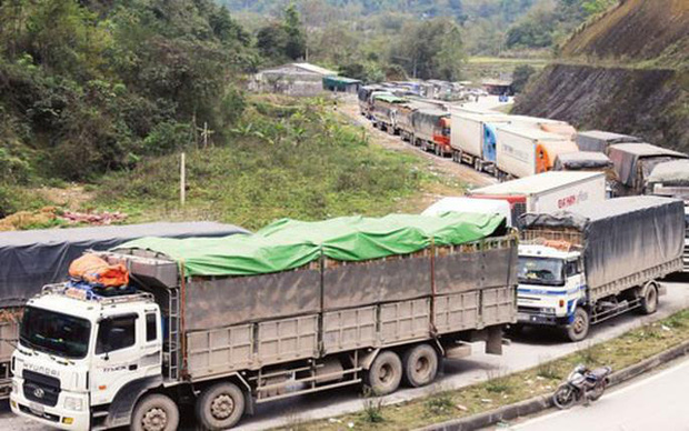 Sau khi thông quan, container chở nông sản Việt tiếp tục mắc kẹt ở Trung Quốc - Hình 1