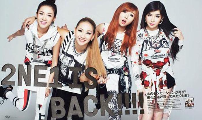 Những nhóm nhạc Kpop tan rã để lại nhiều tiếc nuối nhất - Hình 4
