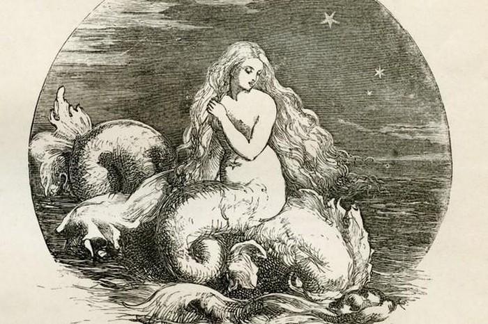 Tiết lộ choáng váng về nàng tiên cá bí ẩn dưới đại dương - Hình 3
