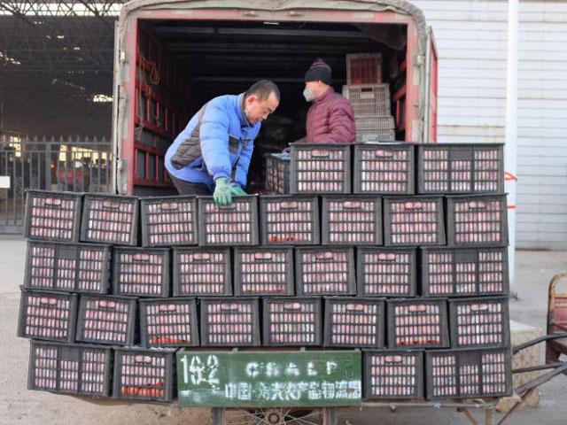 200.000 đồng một cây cải bắp, TQ căng mình đảm bảo lương thực cho người dân - Hình 1