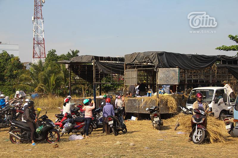 Người Sài Gòn đội nắng giải cứu dưa hấu giúp nông dân: Hành động đẹp giữa bão dịch Corona - Hình 1