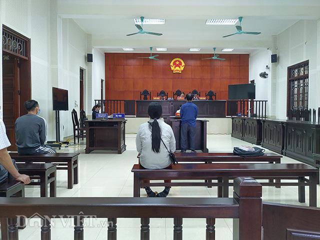 Kỳ án đánh chết 14 con lợn rừng ở Quảng Ninh: Tuyên án 15 tháng tù treo - Hình 1