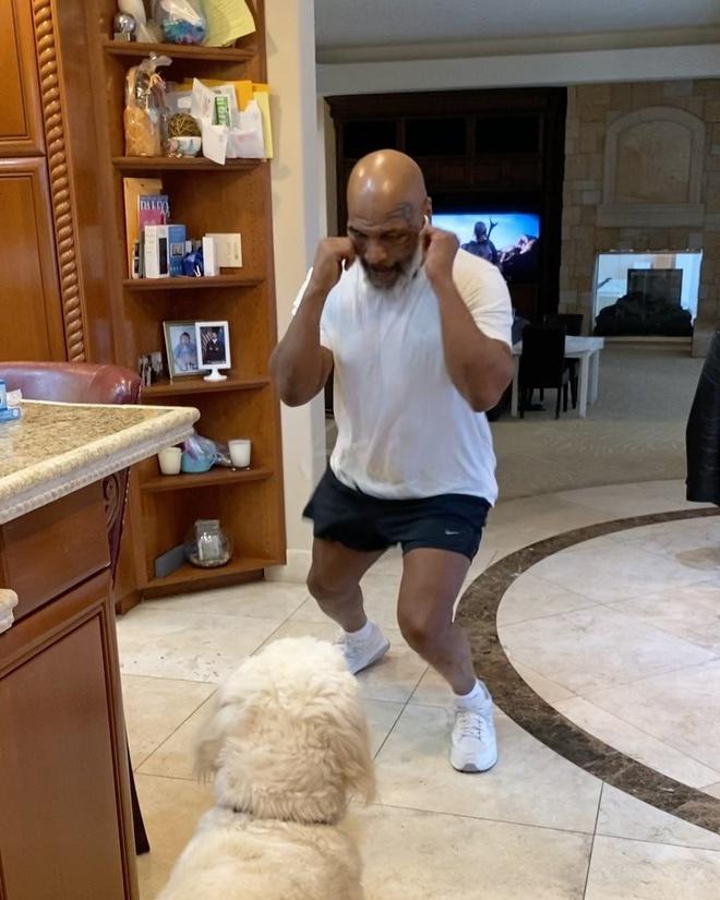 Mike Tyson thể hiện tốc độ đấm bốc ở tuổi 53 - Hình 1