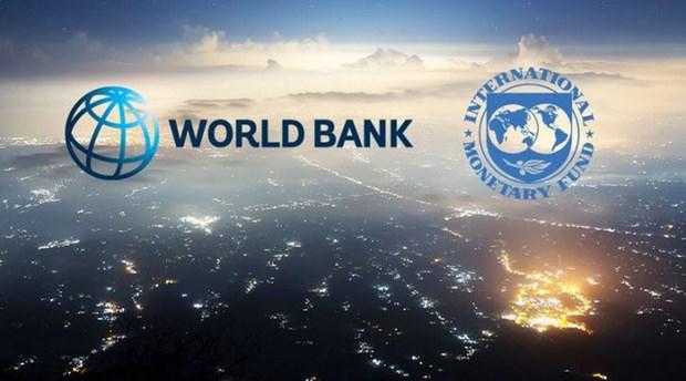 IMF và WB kêu gọi hoãn lịch trả nợ cho các nước nghèo nhất - Hình 1
