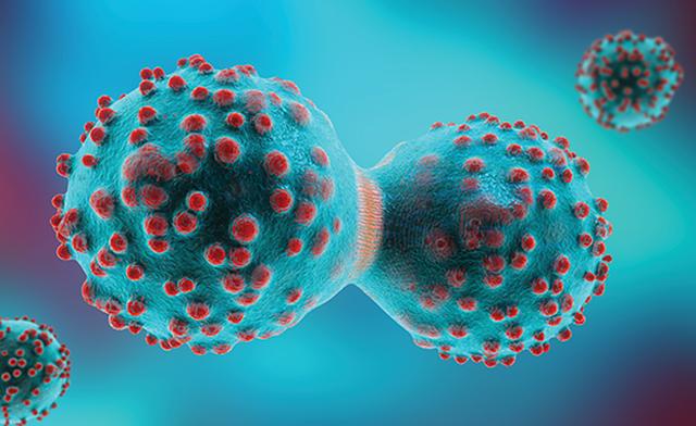 Tế bào ung thư mượn thành phần của tế bào thường để khó bị tiêu diệt hơn - Hình 1