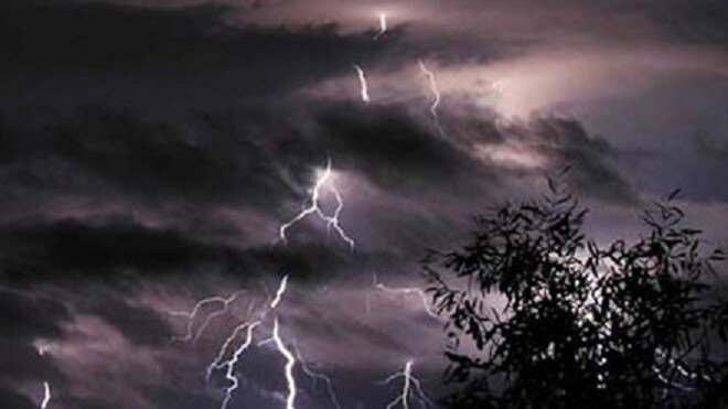 Trú mưa dưới gốc cây, con bị sét đánh tử vong, cha bị thương - Hình 1