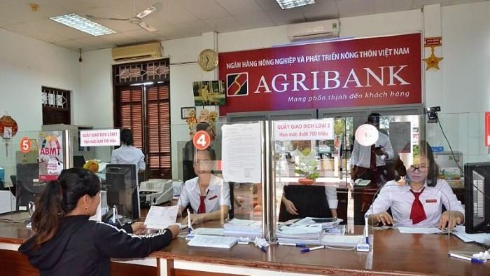 Ủy ban Kinh tế nói gì về việc tăng vốn cho Agribank? - Hình 1