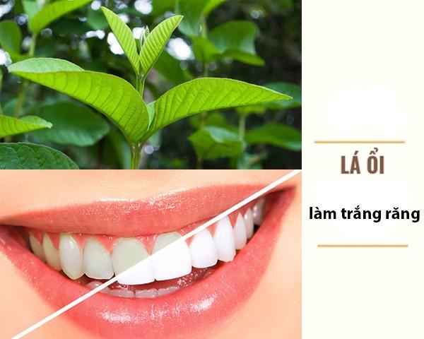 22 Cách làm trắng răng tự nhiên tại nhà hiệu quả nhanh nhất - Hình 8