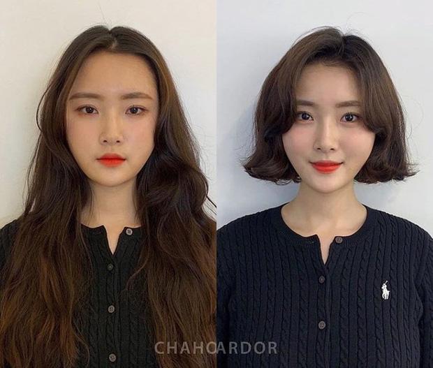 Mạnh dạn thay đổi 1 điểm trên mái tóc, 10 cô nàng này phải thầm cảm ơn anh thợ làm tóc vì cú lên đời nhan sắc - Hình 4