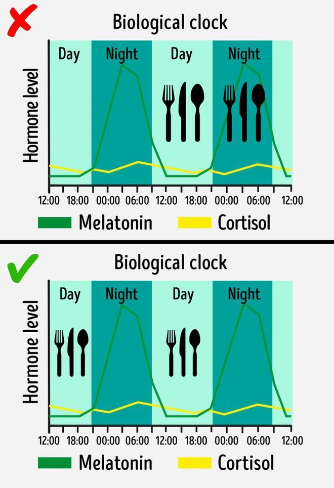 Chế độ ăn kiêng dựa trên ý tưởng đoạt giải Nobel - Hình 2