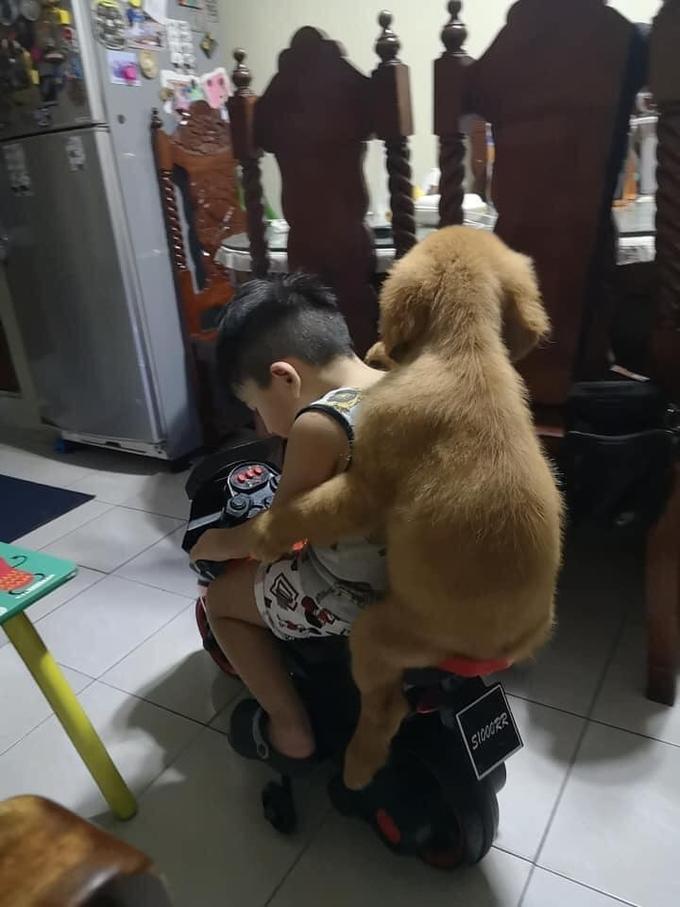 Cậu chủ đèo chó cưng trên siêu xe - Hình 2
