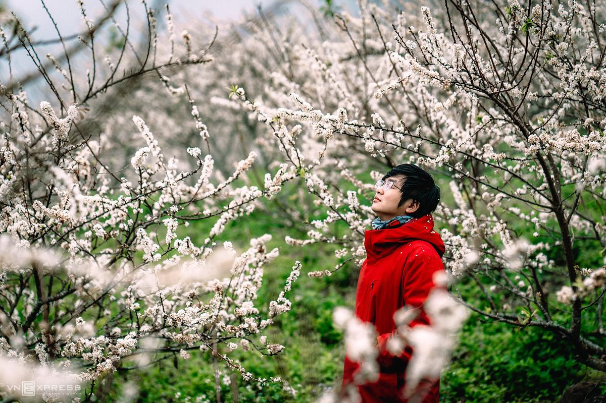 Sắc hoa xuân vùng cao - Hình 5