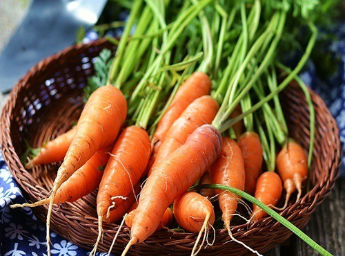 Da sáng mịn đón Tết nhờ ăn trứng, bơ, cà rốt - Hình 4