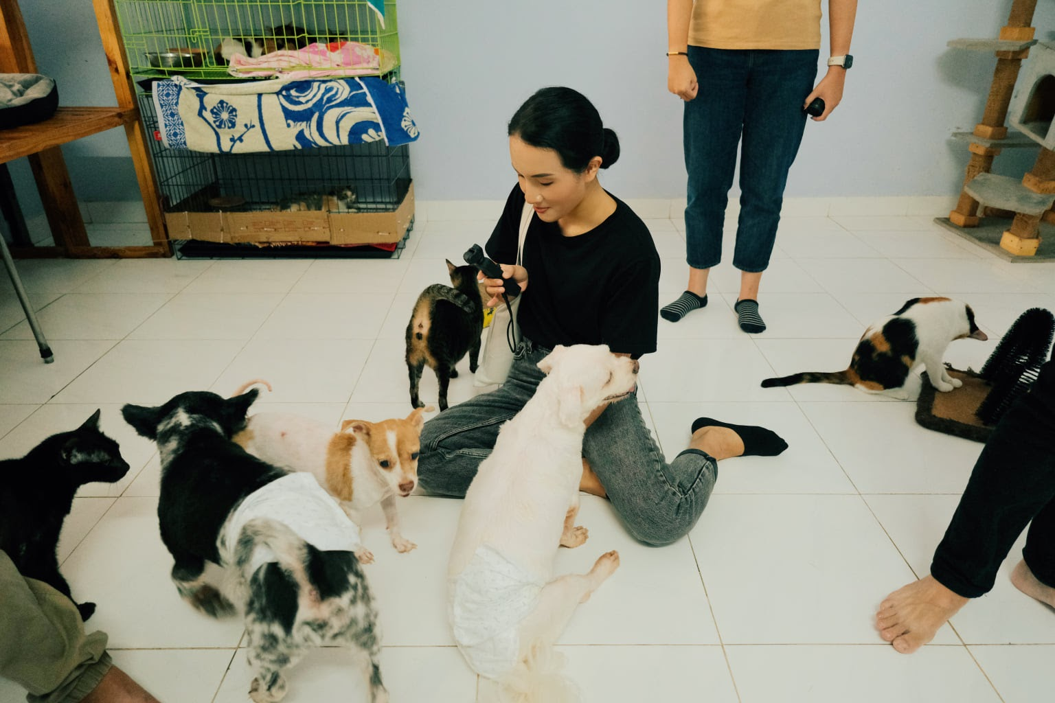 Giang Ơi lên tiếng vụ chó pittbull cắn chết người: Thật dễ dàng để kết tội một con chó mà không xem nó đã phải sống trong cảnh như thế nào - Hình 2