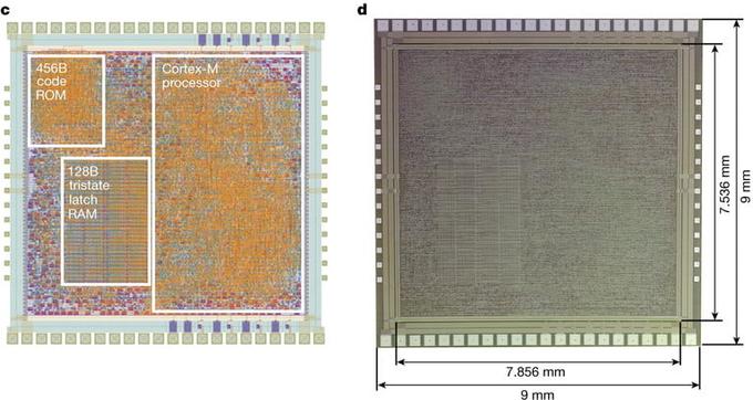 Chip 'uốn dẻo' làm từ nhựa thay vì silicon